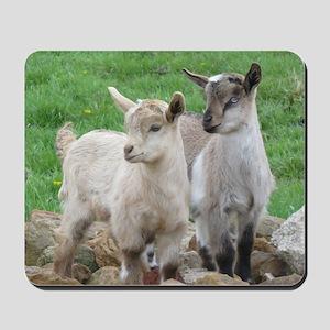 Fainting Goats Mousepad