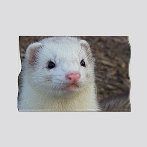 Ferret Face Rectangle Magnet