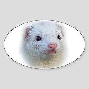Ferret Face Oval Sticker