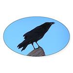 Raven Oval Sticker (50 pk)
