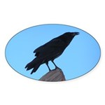 Raven Oval Sticker (10 pk)