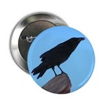 Raven 2.25