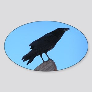 Raven Oval Sticker