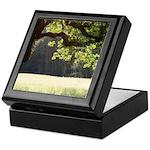 Sunny Oak Keepsake Box