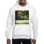 Sunny Oak Hooded Sweatshirt