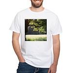 Sunny Oak White T-Shirt