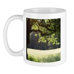 Sunny Oak Mug
