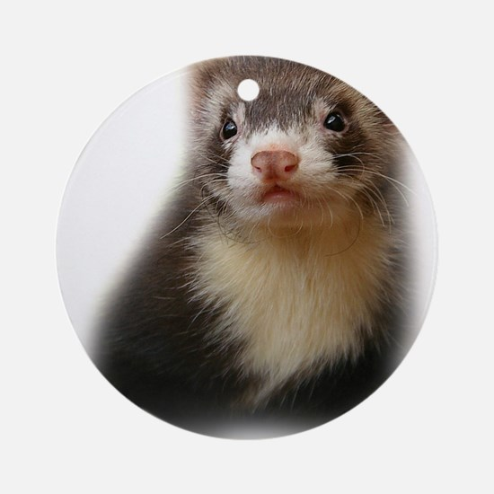 Young Ferret Ornament (Round)