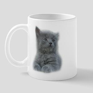 Grey Kitten Mug