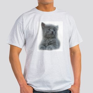 Grey Kitten Light T-Shirt