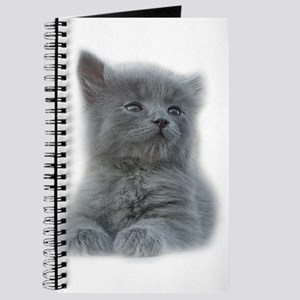 Grey Kitten Journal