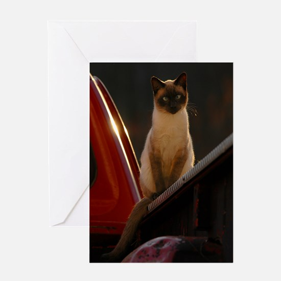 Siamese Cat on a Red Truck Greeting Cards