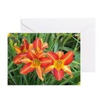 Daylilies Floral Greeting Cards
