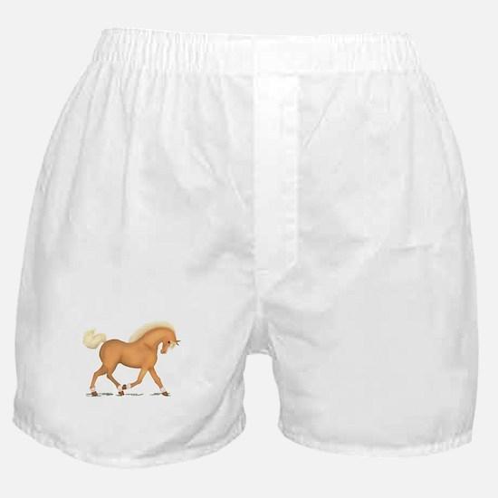 Palomino Socks Blaze Boxer Shorts