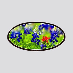 Bluebonnets and Indian Paintbrush Patch