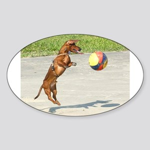 Jumping Doxie Oval Sticker