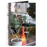 Still Life with Orange Lantern Journal