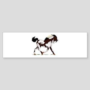 Black Overo Paint Horse Bumper Sticker