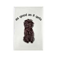 Good Affenpinscher Rectangle Magnet