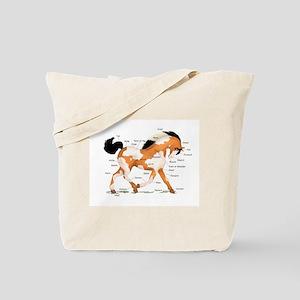 Buckskin Dun Pinto Anatomy Tote Bag