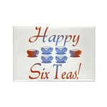 60th Birthday Rectangle Magnet (10 pack)