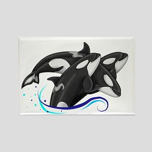 Orca Triple Jump Rectangle Magnet