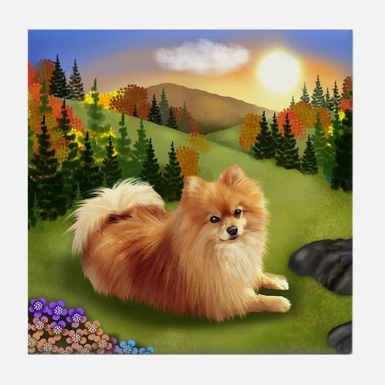 POMERANIAN DOG MOUNTAIN SUNSET Tile Coaster
