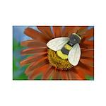 Bee Flower Rectangle Magnet