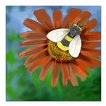 Bee Flower Square Car Magnet 3