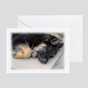 sleepingpuppyframed Greeting Cards