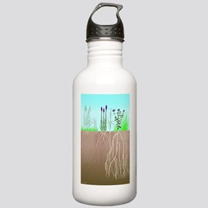Prairie Plants Stainless Water Bottle 1.0L
