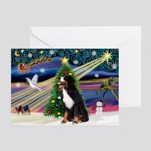 XmsMagic-Bernese MD Greeting Cards (Pk of 20)