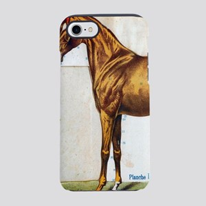 western country anatomy hors iPhone 8/7 Tough Case