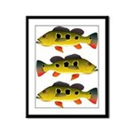 Butterfly Peacock Bass Framed Panel Print