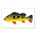 Butterfly Peacock Bass Sticker