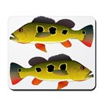 Butterfly Peacock Bass Mousepad