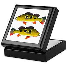 Butterfly Peacock Bass Keepsake Box