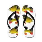 Butterfly Peacock Bass Flip Flops