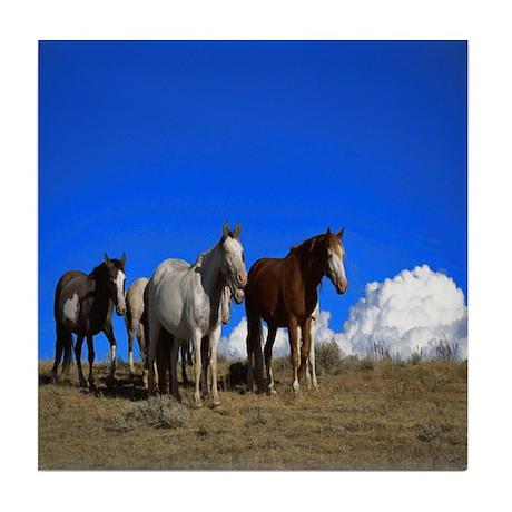 Horses under clear blue sky Tile Coaster