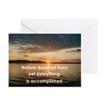 Medley Nature Greeting Cards (Pk of 20