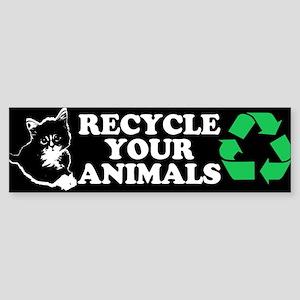 RYA Bumper Sticker