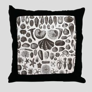 biology science marine seashell Throw Pillow