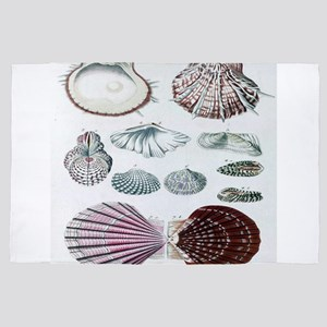 biology science botanical seashell 4' x 6' Rug