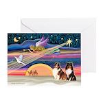 XmasStar/2 Shelties (p1) Greeting Card