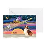 Xmas Star/Sheltie (#7) Greeting Card