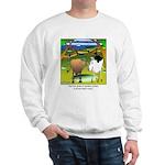 Crop Circles Explained Sweatshirt