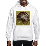 Turkey Fan Hooded Sweatshirt