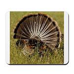 Turkey Fan Mousepad