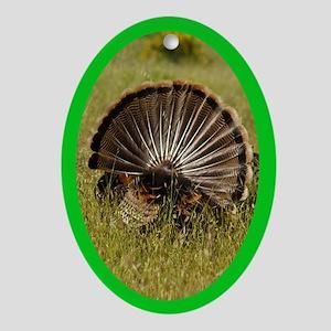 Turkey Fan Oval Ornament