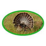 Turkey Fan Oval Sticker (10 pk)